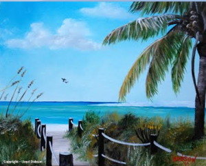 "Private Collection Pat & Joe Niziolek - Lombard, Illinois ""Siesta Key Beach"" #19714"