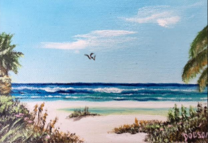 "Private Collection Of: Dawn Colella New Jersey ""Siesta Key"" #138516 - $60 5x7"