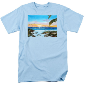 """Why Not Siesta Key"" T Shirt BUY $28"
