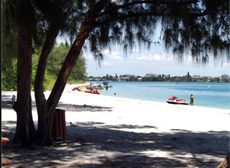 1_-_South_Lido_Key_Beach_Park