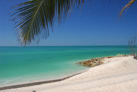 A - Siesta Key Beach #1