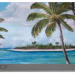 """Tropical Island"" Portable Battery Charger BUY"